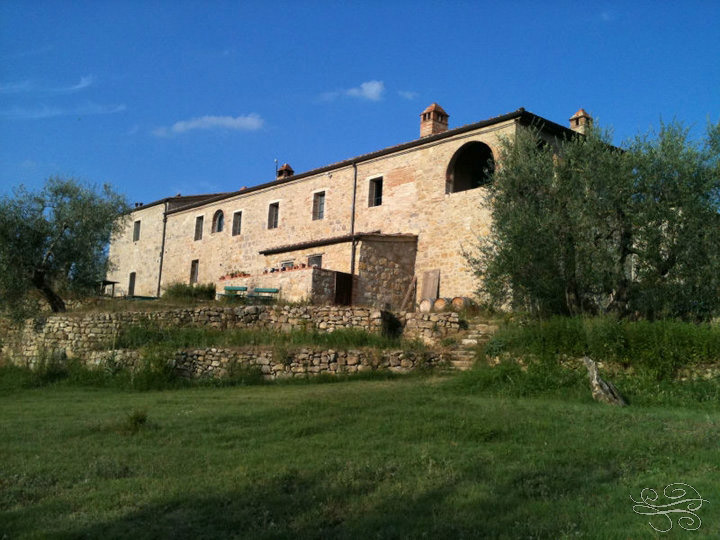 Rustic olive farm in Val D Orcia