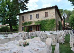 Classic Chianti vineyard