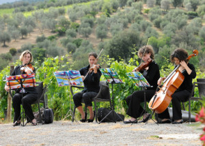 String quartet for weddings