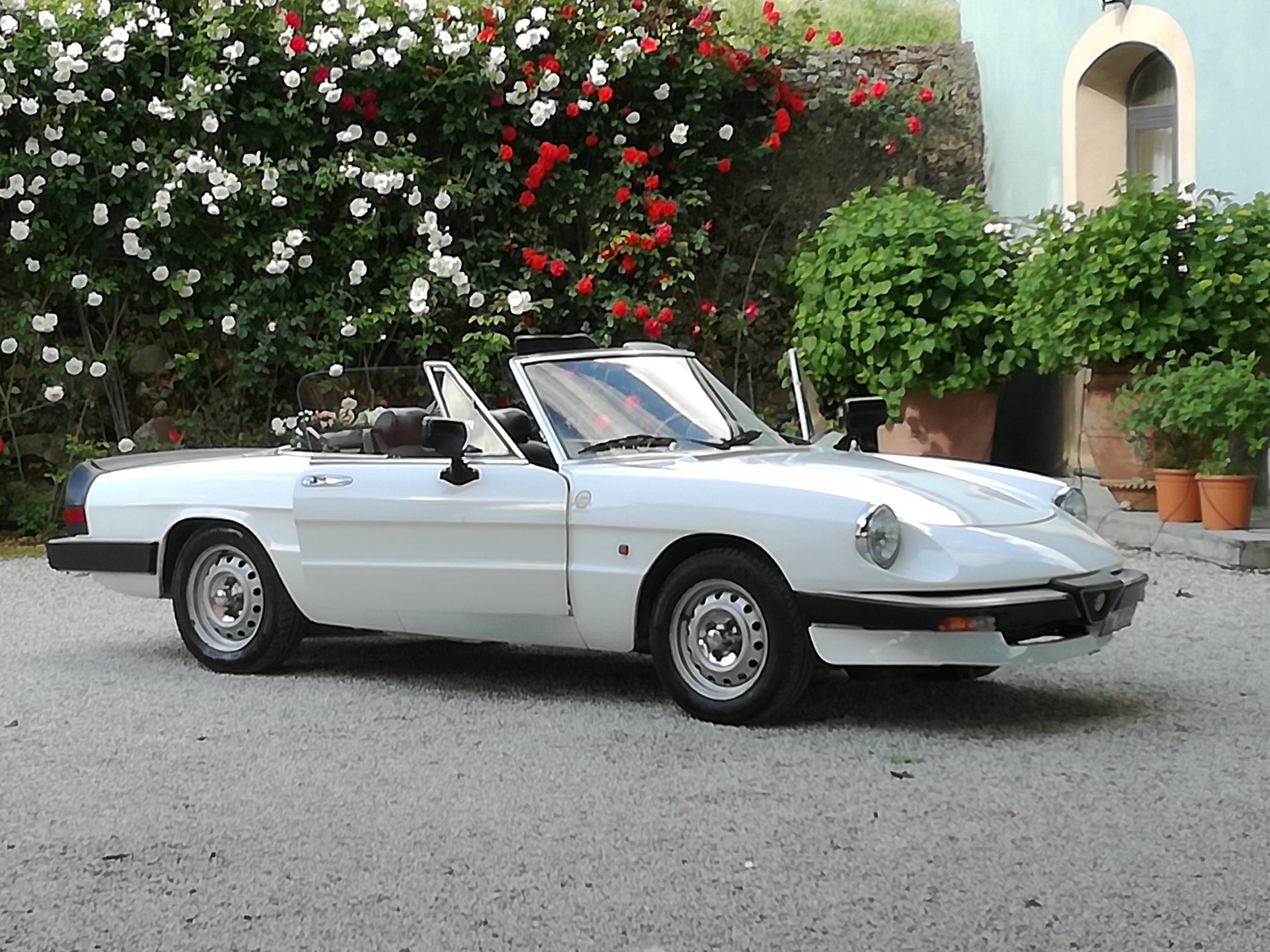 White Alfa Romeo Duetto